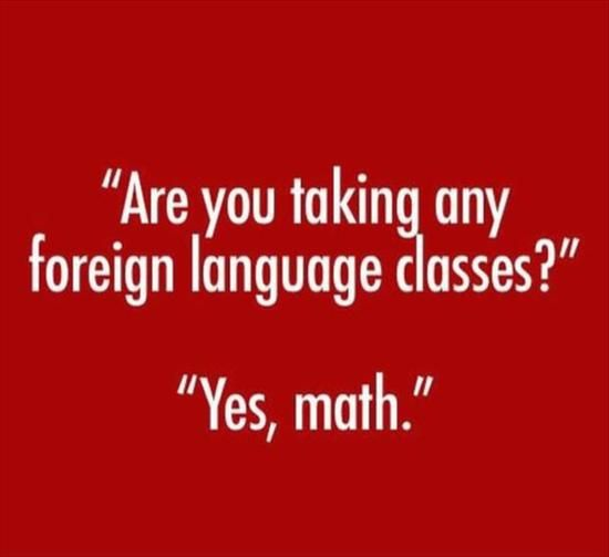 Are you taking foreign language classes