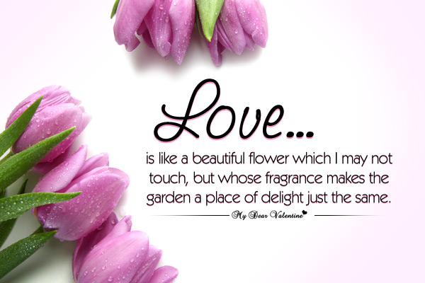 Flower Love Quotes Mesmerizing Love Is Like A Beautiful Flower Which I May Not Touch But Whose