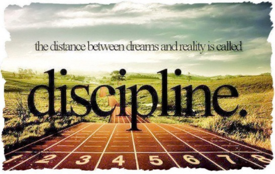 The distance between dreams and reality is called discipline
