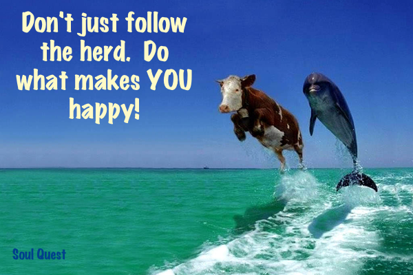 Don't just follow the herd. Do what makes you happy.