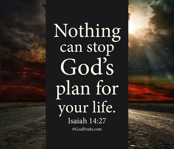 Nothing Can Stop God's Plan For Your Life Isaiah 6060 Delectable Gods Plan Quotes