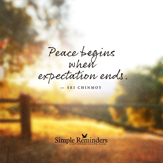 Peace Quotes Gorgeous Peace Quotes