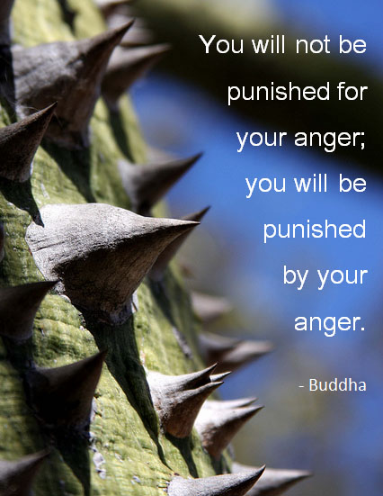 You will not be punished by your anger, you will be punished by your anger