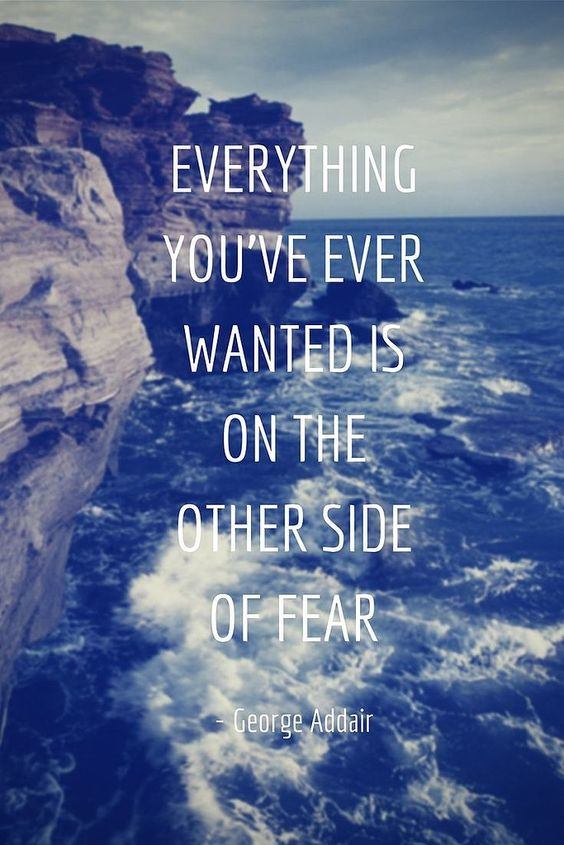 Everything you ever wanted is on the other side of fear