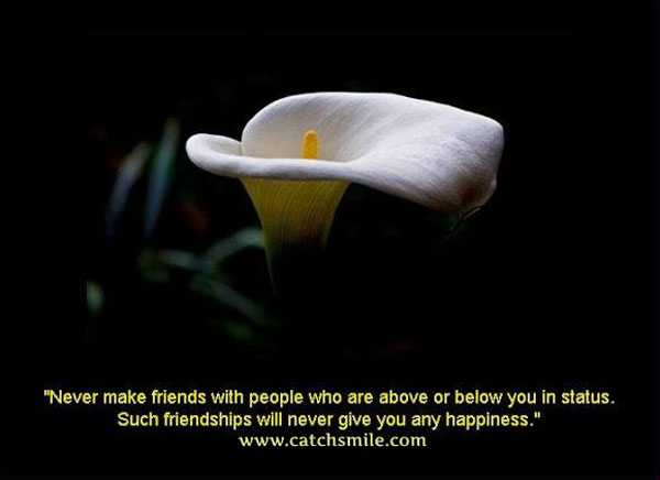 Never make friends with people who are above or below you in status. Such friendships will never give you any happiness
