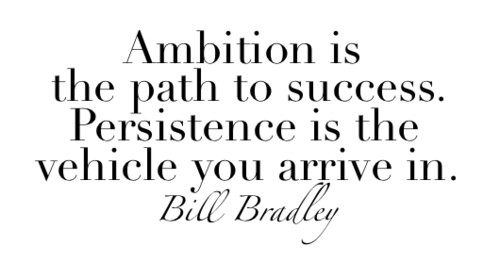 Ambition is the path to success. Persistence is the vehicle you arrive in