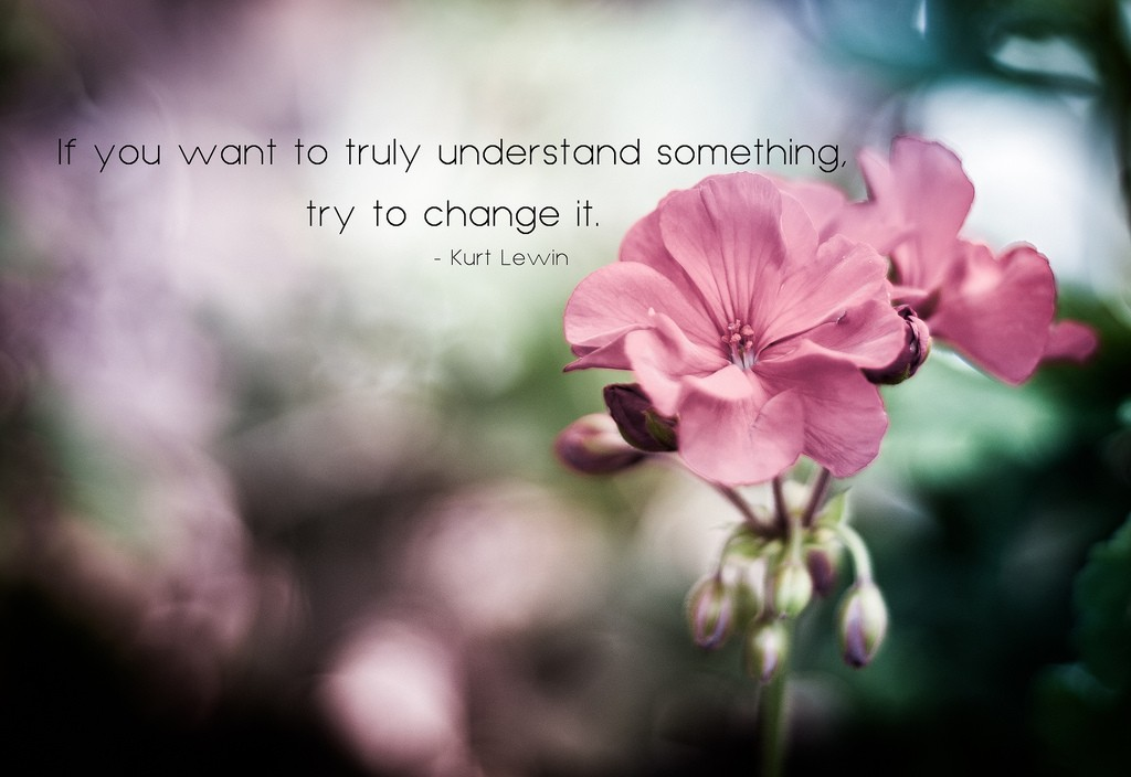 If you want to truly understand something, try to change it.