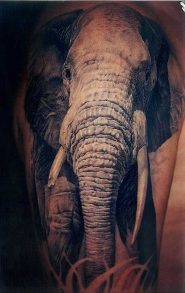 impressive realistic elephant tattoo